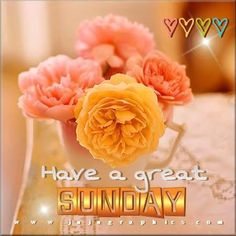 Have A Great Sunday sunday quotes sunday images sunday pictures sunday quotes and sayings