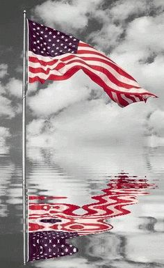 Reflections of a nation. The Stars and Stripes should never touch the ground, should not be walked on and never never be burnt. If you have an old flag give it to the American Legion they will dispose of it in a patriotic way. I Love America, God Bless America, America America, Color Splash Photo, Independance Day, 3d Christmas, Let Freedom Ring, Home Of The Brave, Welcome Spring
