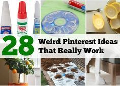 28weird-pinterest-ideas that actually works