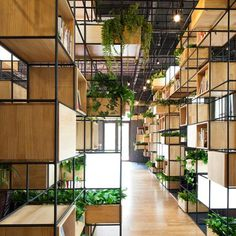 Wooden shelves and planters are among the modular components that populate the metal framework installed around the edges of this cafe in Beijing by Penda.