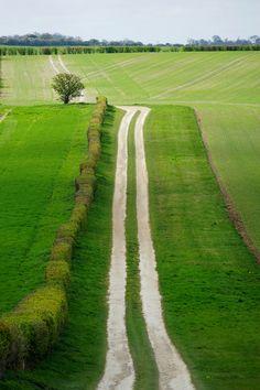 Chalk track in Hertfordshire (England) by Jason Ballard