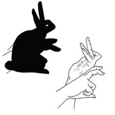 Rabbit, Kangaroo, Cardinal, Bird, Goose, Turkey and Dog.  These are only few examples of the amazing things that you can do with your hands using the amazing hand shadow puppet art.  I've been always been amazed to people who have such an amazing...