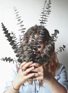 In case you haven't been able to tell yet, we're big fans of eucalyptus! It looks gorgeous, smells delicious, and pretty much just makes our hearts hap. Dried Eucalyptus, Eucalyptus Branches, Green Life, Go Green, Snake Plant Care, Country Wedding Inspiration, Shower Routine, Bottle Garden, How To Preserve Flowers