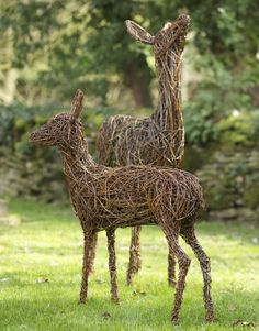 Rose deer willow sculptures. Roe Buck £1,200Roe Doe £1,000Roe Fawn £950 The sculptures are made using British willow that is interwoven and shaped around steel armature by talented artist Emma Stothard, who has been invited by HRH The Prince of Wales to exhibit her willow sculptures on the Orchard Lawns at Highgrove. The contrasting willow colours create form and definition in each animal sculpture. Finally the piece is then coated in a linseed oil and turpentine solution to preserve and…