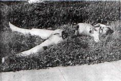 This pretty li'l mama was Elizabeth Short, more popularly knows as the Black Dahlia. Her face was mutilated into a 'Glasgow Smile' and her body chopped into two - and an unsolved murder mystery. The...