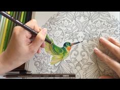 How I color using colored pencils. Colored Pencil: Prismacolor Premier Coloring Book: Secret Garden by Johanna Basford Instagram: https://www.instagram.com/c...