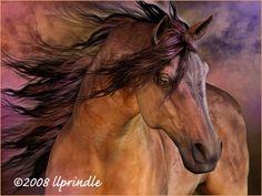 """ Belleza Fiero"", by Laurie Prindle"