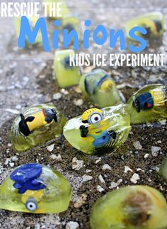 Minions Kids Activity   Fun Ice Experiment - Kids will love rescuing the minions in this fun ice experiment + more ideas! Get ready for the Minions Movie this summer SavingSaidSimply.com