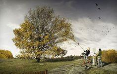 arbol-sin-hojas-efecto-optico.jpg (828×528)