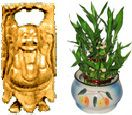 Laughing buddha with lucky bamboo plant in pot available for Hyderabad delivery. Low price range from others website. Visit our site : www.flowersgiftshyderabad.com/Diwali-Gifts-to-Hyderabad.php