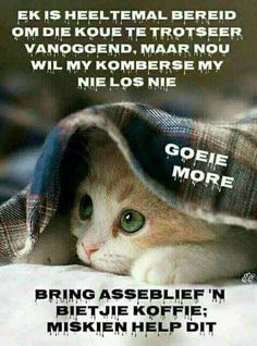 Cool I can read this!sort of Afrikaanse Quotes, Goeie Nag, Goeie More, Special Quotes, Good Morning Wishes, Beautiful Landscapes, Good Night, Qoutes, Poems