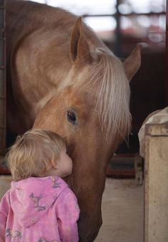 How cute, big blonde horse getting a kiss from a little girl.