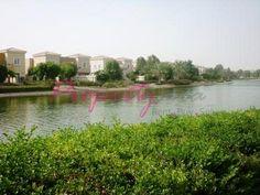 2 Bedroom   Study Villa for Rent in Al Reem 2 - AED 155000