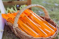 Carrot Bubble Wands from a Peter Rabbit 1st Birthday Party via Kara's Party Ideas | KarasPartyIdeas.com (33)