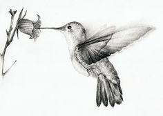 Humming bird drawing hummingbirds humming bird tattoos awesome drawings hummingbird drawing pencil drawings of birds hummingbirds . Cute Tattoos, Beautiful Tattoos, Black Tattoos, Body Art Tattoos, Tatoos, Bird Tattoos, Bird Drawings, Cool Drawings, Pencil Drawings