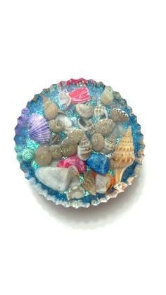 Resin Seashell Paper weight
