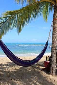 Everything you need to know before your trip to Costa Rica.  http://www.happycoconutstravelblog.com/blog/everything-you-need-to-know-before-your-trip-to-costa-rica