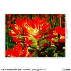Indian Paintbrush Red Texas Wildflower Blank Greeting Card
