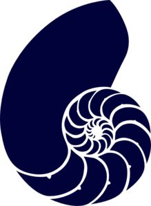 Free Image on Pixabay - Nautilus, Snail, Prehistoric Concha Nautilus, Nautilus Shell, Peter And The Starcatcher, Shell Drawing, Shell Tattoos, Stencils, Pottery Patterns, Shell Art, Stencil Designs
