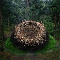 Nils-Udo No flerte entre utopia e movimento, o bávaro montou um ninho de 80 toneladas com arbustos, pedras, galhos, terra e grama ainda em 1978, na cidade de Lüneburg Heat, na Alemanha.