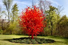 """Summer Sun"" by Dale Chihuly at Frederick Meijer Gardens.  Love his work!!"