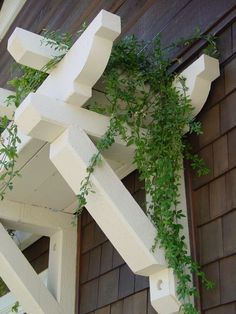 pergolas for window if I lived in Nantucket, or when I get the beach cottage #gardenvinesmorningglories