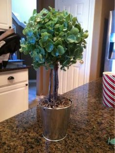DIY Home Decor :make your own topiary