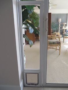 Spiffy Pet Products: Window Mounted Cat Door
