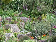 Sehr natürlich wirkt ein mit Findlingen und farbenfrohen Stauden bepflanzter Hang