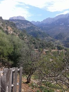 On the way to Fornalutx - Island of Mallorca in winter time. Spain