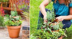 Jardiner avec les enfants : une pyramide d'aromatiquesVoici une idée originale pour initier les enfants au jardinage. Ils pourront réaliser une pyramide de plantes aromatiquesen empilant des pots en terre cuite et en y plantant ciboulette, sauge ou persil.