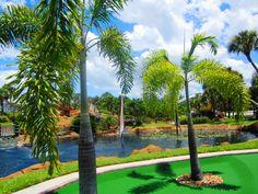 . Miniature Golf, Florida Beaches, Golf Courses, San Carlos