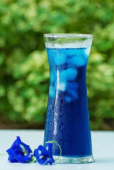 A picture says more than 1000 words! Butterfly Pea Flower Tea, Blue Butterfly, Blue Drinks, Summer Drinks, Glace Fruit, Blue Food, Edible Flowers, Tea Recipes, Iced Tea