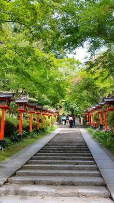 kyoto japan travel tips. japan things to do. travel inspiration. beautiful places to visit. east asia travel destinations. Kyoto Travel Guide, Japan Travel Tips, Asia Travel, Japan Travel Photography, Indoor Garden, Home And Garden, Kyoto Itinerary, Kyoto Japan, Okinawa Japan