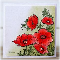 Poppies from Penny Black