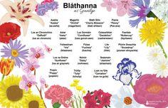 Bláthanna - Flowers - Poster - Doodle - Irish Irish Language, Irish People, Irish Roots, World Languages, Language Lessons, Smart Girls, Teaching Tips, Some Fun, Vacation