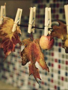 Cute fall decor idea!