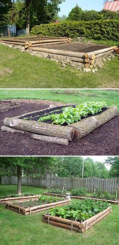 Gardening and Farming in the backyard with logs. Homesteading.