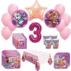 Girl Pups Paw Patrol Skye & Everest 3st Birthday Party Pa...