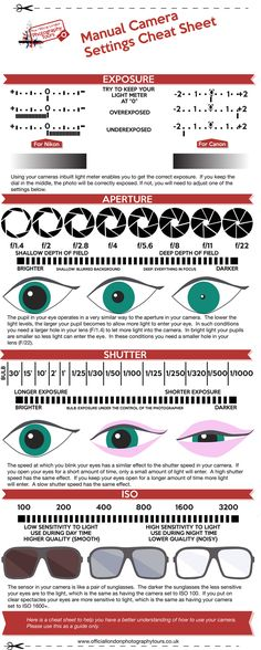 How to use Aperture Shutter Speed and ISO Info Graphic