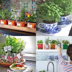 4 ideias simples para deixar a sua cozinha mais colorida! - Plantas e mini hortas. Confira no Link!