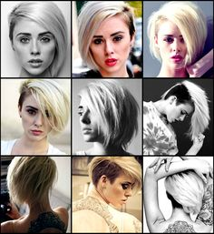 alysha nett hair collage
