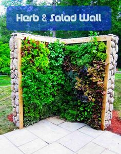 "vertical ""herb and salad wall"" - hang from garage eaves above outdoor table to make space in raised beds"
