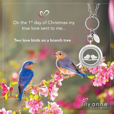 {On the 1st day of Christmas my true love sent to me...} Two love birds on a branch tree. www.lilyannedesigns.com.au #Christmas #LilyAnneDesigns #PersonalisedLockets