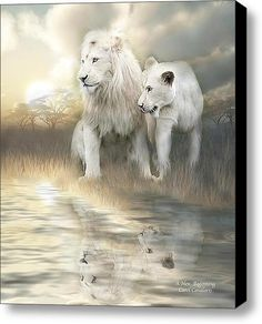 A New Beginning Stretched Canvas Print / Canvas Art By Carol Cavalaris