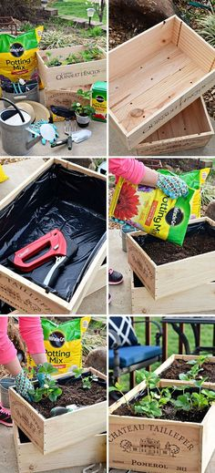 """Vegetables, herbs and flowers can thrive in wine boxes—or in other crates. Wine box planters are great for small space gardens. Get step-by-step tutorial for a wine crate garden at <a href=""""http://TidyMom.net"""" rel=""""nofollow"""" target=""""_blank"""">TidyMom.net</a>"""
