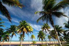 BARRA GRANDE .NET - Beaches - Maraú Peninsula - Bahia - Brazil