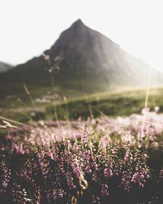 Ideas For Nature Landscape Photography Flowers Earth Landscape Photography, Nature Photography, Travel Photography, Photography Flowers, Hippie Photography, Adventure Photography, Photography Classes, Photography Backdrops, Aerial Photography