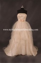 Inexpensive champagne wedding dress.  Beautiful colored wedding gown.