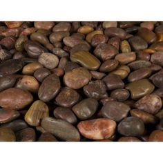 MS International 40 lb. Small Red Polished Pebbles Bag-LPEBQRED3POL40 at The Home Depot